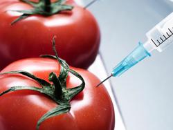 Генетические модифицированные продукты