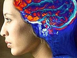 Мозг восстанавливает организм