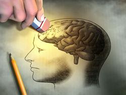 Участки мозга