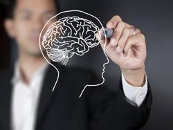 Бионический мозг