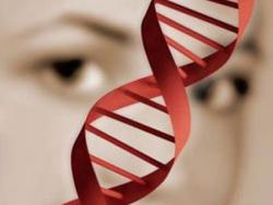 Генетика шизофрении