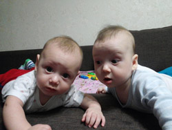 Двойнята