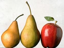 форма тела яблоко или груша