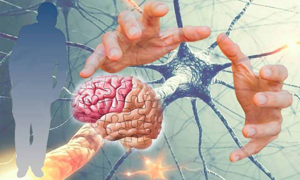 Остановить болезнь альцгеймера